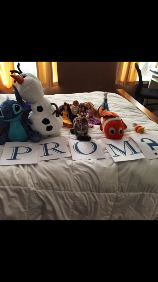 Sam Fox's Disney-themed Promposal