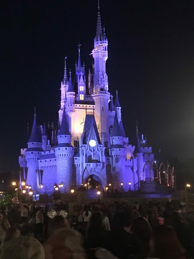 Despite Snow Delay, Senior Disney Trip a Success