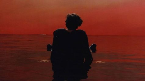 Harry Styles Breaks from Boy Band Style on First Solo Album