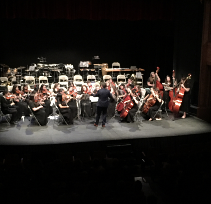 BASH Orchestra performing at a theatre in Barcelona