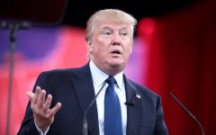 BASHing Heads: Trump's First Two Years