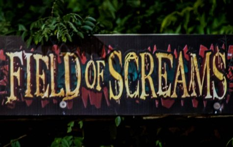 Spooky Encounters At Field of Screams